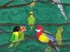 Les_oiseaux_a_bec_crochus