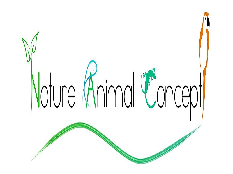 nature animal concept