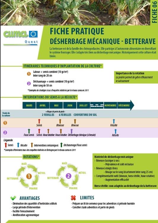 Fiche-desherbage-betterave-11 | Le blog de l'exploitation – Les ... Fiche-desherbage-betterave-11