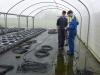 irrigation1-flou