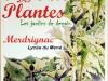 fete_des_plantes_4